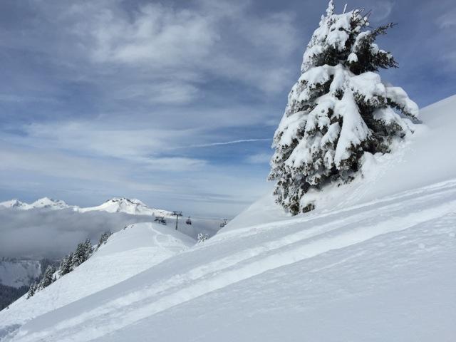 Winter Location Skiing
